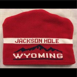 GAP Kids Jackson Hole Wyoming Winter Hat Size L